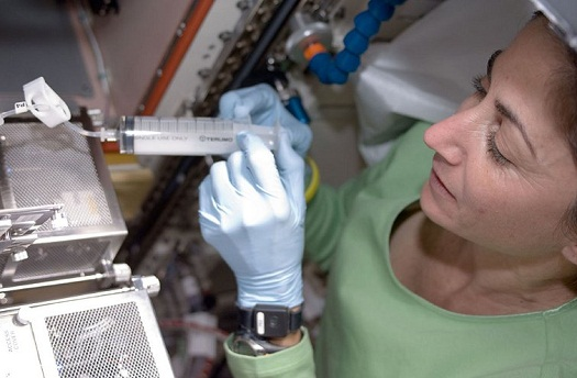NASA astronaut Nicole Stott working on the Cell Biology Experiment Facility (CBEF) SPACE SEED experiment in the Kibo JEM Pressurized Module (JPM) during Expedition 21. The Wet Lab Kit will make it easier for sample collection like this aboard the International Space Station. (Credit: NASA)