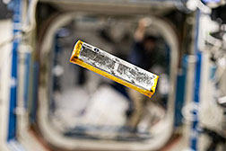 Photo by Astronaut Scott Kelly of a sample of the synthetic muscle experiment floating in the International Space Station. (Credit: NASA)