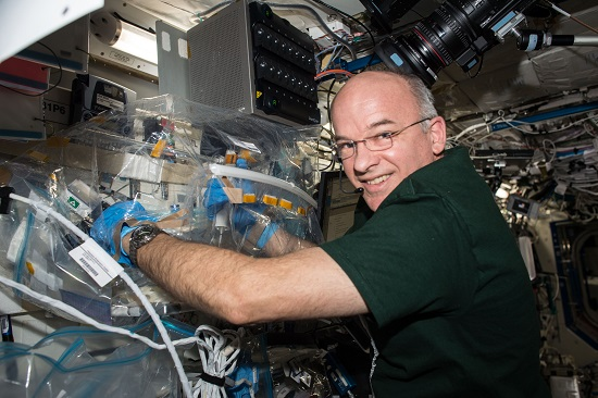 NASA astronaut and Expedition 47 Flight Engineer Jeff Williams works with the WetLab-2 system aboard the International Space Station. WetLab-2 is a research platform for conducting real-time quantitative PCR for gene expression analysis aboard the ISS. The system enables spaceflight genomic studies involving a wide variety of biospecimen types in the unique microgravity environment of space. (Credit: NASA)