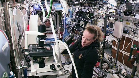 Astronaut Kate Rubins works to set up a new microscope for the Heart Cells study. (Credit: NASA TV)